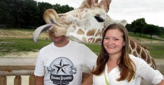 Os Photobombs mais engraçados de animais